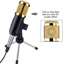 latecomer <b>Studio</b> Microphone Singing <b>Professional</b> Singing ...