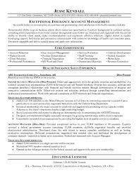 insurance account manager resumefree resume templates