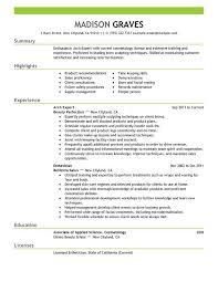 Sample Resume For It Management   Resume Maker  Create