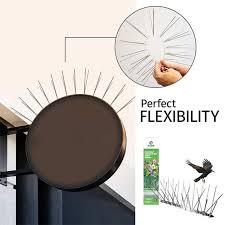 Eco friendly <b>Bird Repellent</b> Spikes Anti Pigeon Nail <b>Bird Deterrent</b> ...