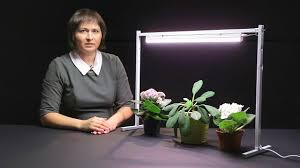 Обзор ламп для рассады и <b>растений</b> от компании <b>Uniel</b> - YouTube