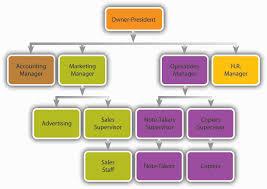 organizingthe organization chart