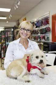 pet shop workers job title overview com pet shop workers from entry level clerks to store managers are involved in the daily upkeep of a pet store they sell pet supplies including food