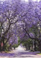 <b>Backdrop</b> Garden NZ   Buy New <b>Backdrop</b> Garden Online from Best ...