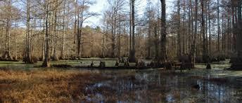 Little River National Wildlife Refuge
