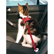 <b>Автомобильный ремень</b> безопасности <b>Trixie</b>, для кошки, 20-50 см ...
