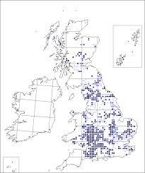 Paris quadrifolia | Online Atlas of the British and Irish Flora