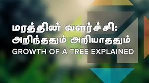 growth of a tree explained tamil screencast puthunutpam
