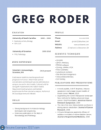 making an online resume sample service resume making an online resume the resume builder best cv examples 2017 to try resume examples 2017