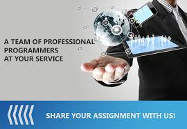 Professional Programming Assignment Help
