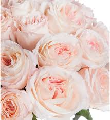 <b>Букет из пионовидных роз</b> Mayras Bridal (15, 31 или 51), Москва