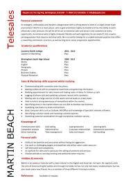 tele s cv sampleentry level tele s resume template