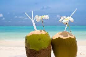 Image result for drink the coconut