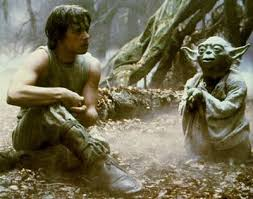 Image result for luke and yoda gif