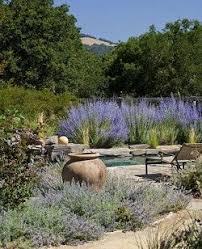 Small Picture The 25 best Mediterranean garden design ideas on Pinterest