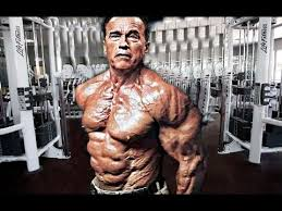 Image result for arnold schwarzenegger