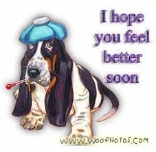 Get Well Soon Pictures Archives - Woo Funny Photos