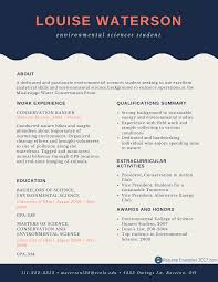 perfect entry level resume examples resume examples  best entry level resume examples