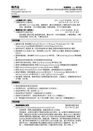 resume chinese
