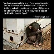 Sad Animal Cruelty Quotes Bavxpl - Animals