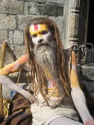 Resultado de imagen para imagenes de los jainíes