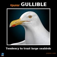 punsr GULLIBLE meme | Punsr.com | There is a joke in every word ... via Relatably.com
