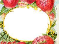 1049 лучших изображений доски «ягоды рукты овощи» в 2020 г ...