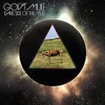 Dark Side of the Mule album by Gov't Mule