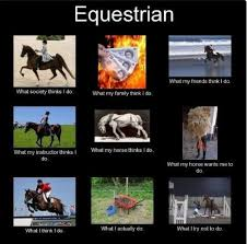 Most Relatable Horse Memes | Equestrian Supplies Blog | Edgemere via Relatably.com