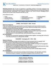 blue executive resume template resume layout word