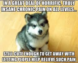 In a great deal of horrific, truly insane chronic pain on all ... via Relatably.com