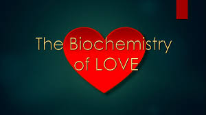 articles scientect the biochemistry of love