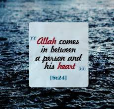 Quotes About Allah. QuotesGram