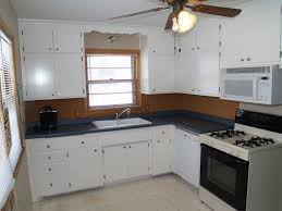 green kitchen cabinets couchableco: diy painting kitchen cabinets ideas couchableco