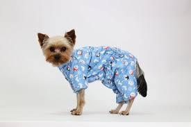 <b>Комбинезон Yoriki</b> Умка для собак девочек - купить в ЮниЗоо в ...