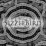 Image result for sizzlebird