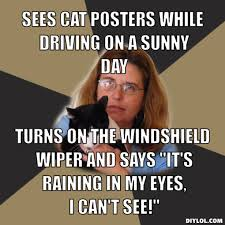 crazy-cat-lady-meme-generator-sees-cat-posters-while-driving-on-a-sunny-day-turns-on-the-windshield-wiper-and-says-it-s-raining-in-my-eyes-i-can-t-see- ... via Relatably.com