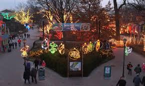 toledo zoo lights compete for best in u s the blade