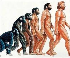 Resultado de imagen de hominido dibujo