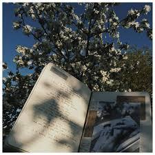 #раскладки #инстаграм #<b>книги</b> #еда #ежедневник #<b>блокнот</b> ...
