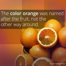 Oranges Before Orange - Smart Meme - Curiosity via Relatably.com