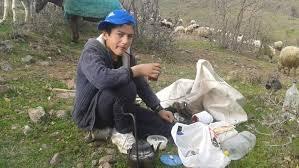 Tuncelili çoban TEOG'da birinci oldu