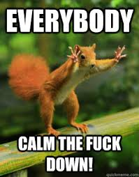 EVERYBODY CALM THE FUCK DOWN! - Panic Squirrel - quickmeme via Relatably.com