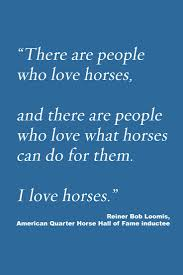 17 best images about quotes words inspirational agreed it s all about the love of the horse
