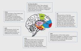obsessive compulsive disorder essay paper obsessive compulsive disorder study resources obsessive compulsive disorder study resources
