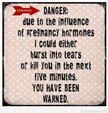 pregnancy-quotes-best-meaning-sayings-danger.jpg via Relatably.com