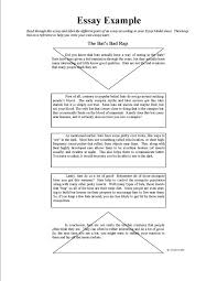 cover letter writing an example essay an example of an essay on  cover letter example of an essay sample plagiarized examplewriting an example essay