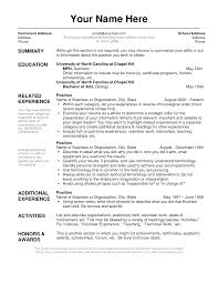 resume format layout  basic resume layout examples  sample resume    resume layout examples