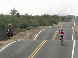 Saguaro national park east cyclist horse