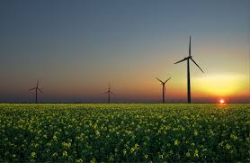 renewable energy simple english the encyclopedia renewable energy sources wind sun and biomass